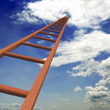 Binary Options Ladder Trading