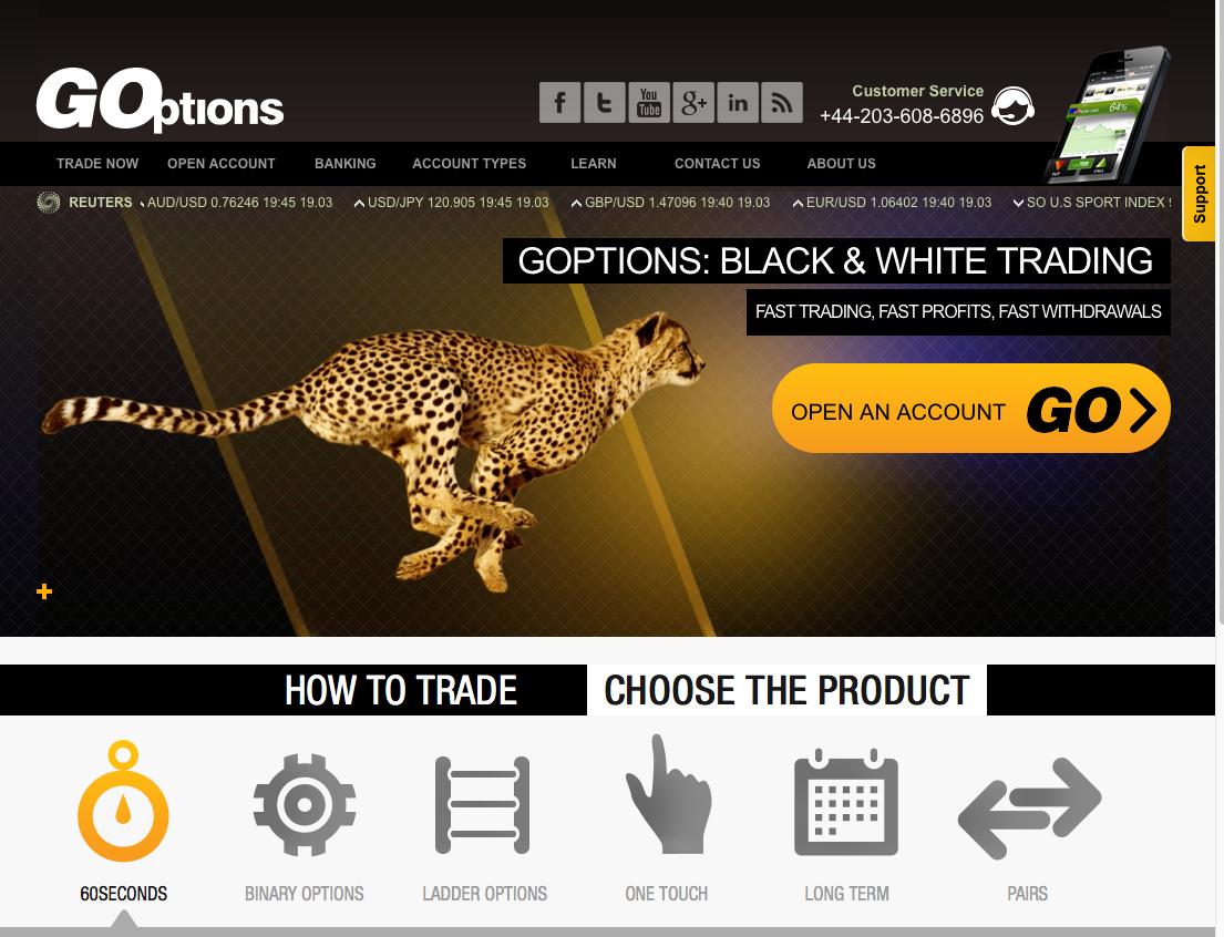 GOptions screenshot