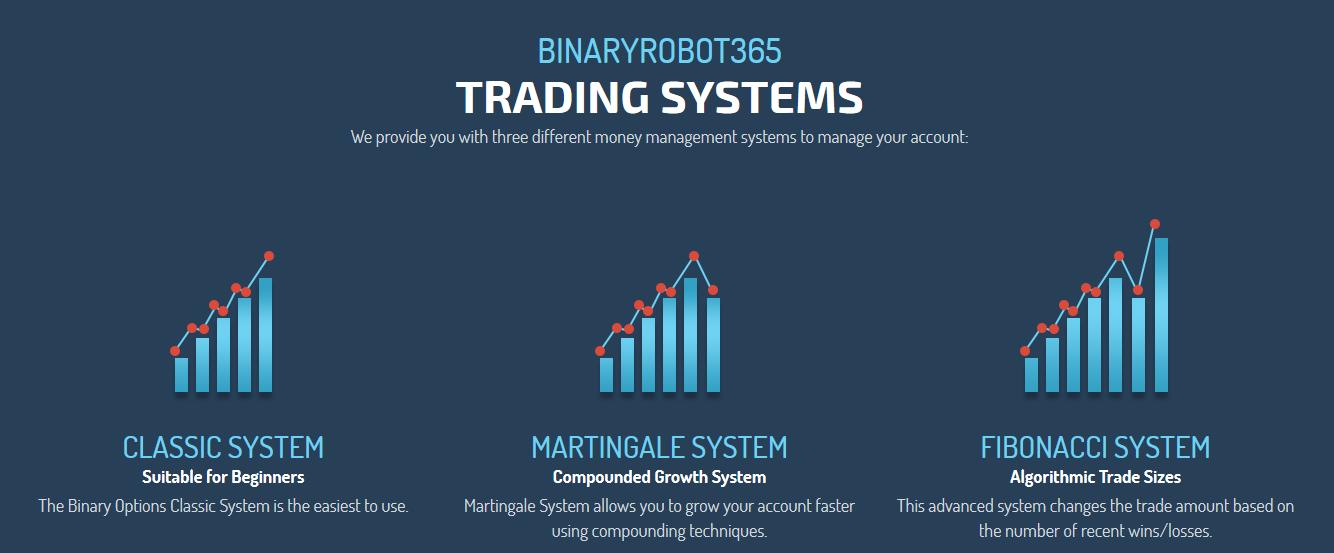 BinaryRobot265 Review